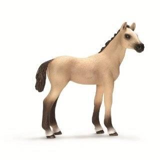Akhal Teke Foal (Schleich: Horses)