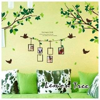 Sticker   Green Tree Branches with Flying Birds & Photo Frames Baby