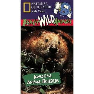 National Geographics Really Wild Animals Awesome Animal Builders