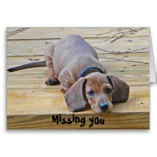 AK  Funny Dachshund Missing You Card