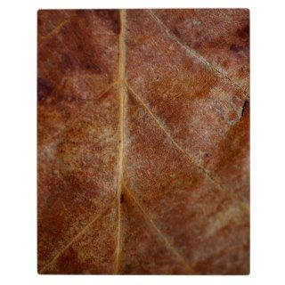 Brown Leaf Leaves Tree Display Plaque