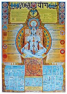 Giant Yoga Wall Chart Chakras Positions and Paths Info Packed Wall Chart Poster