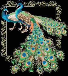 Peacock Cross Stitch Kit