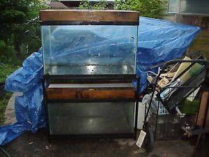 40 gallon bow front aquarium fish tank magnum filter 350 for 55 gallon fish tank size