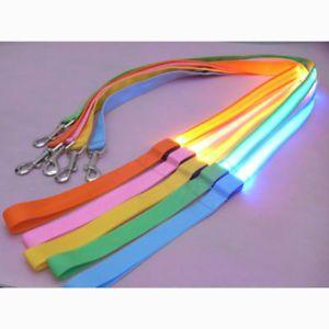 LED Flashing Pet Leash Rope Belt Dog Harness Safety Lead Light Nylon 5 Color