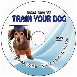 How to Train Your Dog DVD Video Tutorial Guide Behavioural Issues Puppy Training