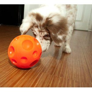 Dog Treat Ball Omega Paw Tricky Large Dispenses Treats as Dog Plays New Fun