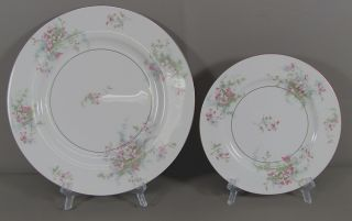 49 Piece Set of Haviland Apple Blossom China Dinnerware