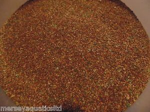 45g Powdered Fry Fish Food for Small Baby Fish Guppy Molly platy Cold Water