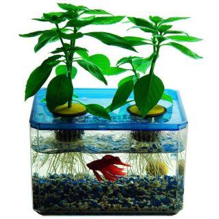 Jr Ponics Aquaponic Fish Garden System