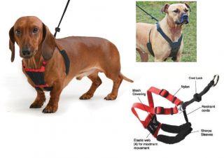 Sporn Mesh Non Pull Harness Dog No Pull Comfort Halter