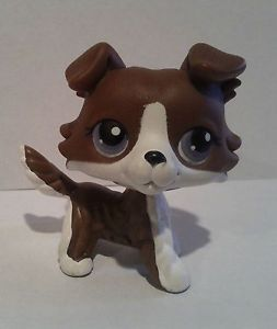 Littlest Pet Shop LPS RARE Chocolate Brown White Collie Dog Purple Eyes Puzzle