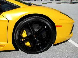 Pearl Effect Giallo Orion Nero Ade Italian Gallardo Murcielago Ferrari 458