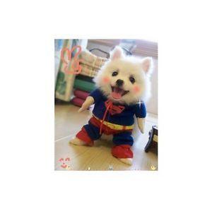 Pet Dog Clothes Costumes Superman Suit Size XS s M L XL