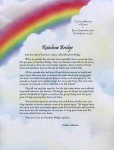 Personalized Pet Loss Rainbow Bridge Memorial Poem Also Makes Nice Gift