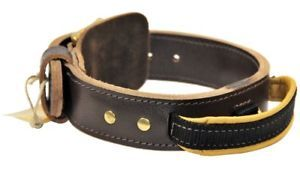 Large Dog Collar with Handle for Large Breeds Doubleply