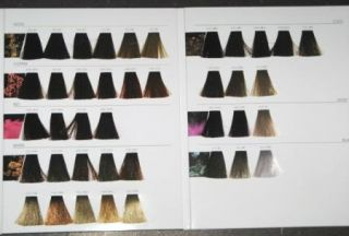 L'Oreal INOA Hair Color Swatch Book New Full