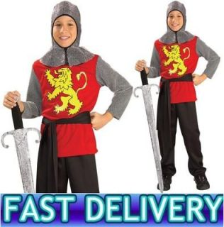 Boys Medieval Knight Costume