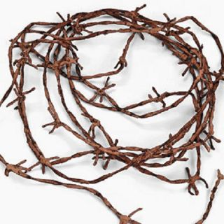 Rusty Barb Wire Cord Scary Halloween Haunted House Decor