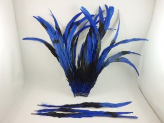 "10 Royal Blue Romance Rooster Tails Craft Feathers 16"" 18""L"
