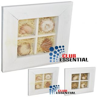 Decorative Seashell Wall Hanging Wooden Frame Square Shape 17 x 17 Cm