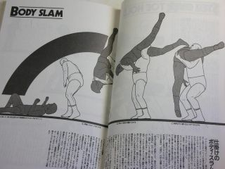 Pro Wrestling Combat Sports Technique Book Japan Martial Arts Lock Grappling