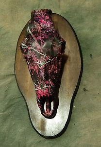 Replica Pink Camo Bull Elk Skull Mount Kit Taxidermy No Antlers Included