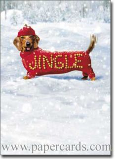 Jingle Dog 10 Funny Dachshund Boxed Christmas Cards by Avanti Press