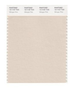 PANTONE SMART 13 1107X Color Swatch Card, Whisper Pink: Home Improvement