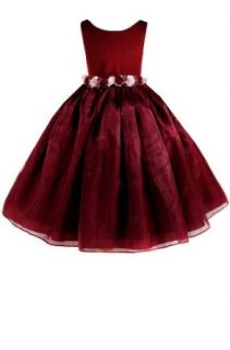 AMJ Dresses Inc Elegant Burgundy Flower Girl Holiday Dress Size 2: Clothing