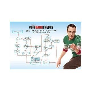 Big Bang Theory Friendship Flow Chart Sheldon TV Poster (24 x 36 inches)   Prints