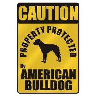 PROTECTED BY AMERICAN BULLDOG HOME SECURITY SYSTEM
